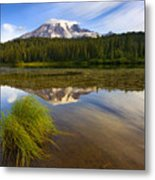 Crystal Clear Metal Print by Mike  Dawson