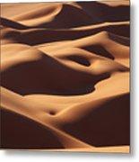 Curves Metal Print by Ivan Slosar