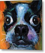 Cute Boston Terrier Puppy Art Metal Print by Svetlana Novikova