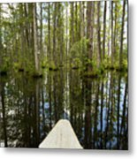 Cypress Garden Swamp Metal Print by Dustin K Ryan