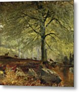 Deer In A Wood Metal Print by Joseph Adam