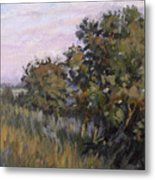 Dew On Dusk - Giverny France Metal Print by L Diane Johnson