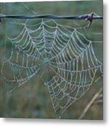 Dew On The Web Metal Print by Douglas Barnett