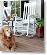 Dog Days Of Summer Metal Print by Toni Hopper