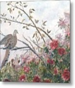 Dove And Roses Metal Print by Ben Kiger