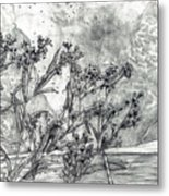 Dunbar Cave Clarksville Tn Metal Print by Joy Neasley