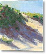 Dune Roses Metal Print by Barbara Hageman