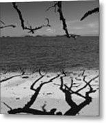 Dunk Island Australia 172 Metal Print by Per Lidvall