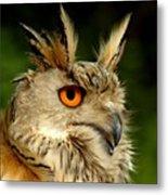 Eagle Owl Metal Print by Jacky Gerritsen