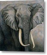 Elephant Metal Print by Lawrence Supino