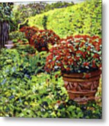 English Flower Pots Metal Print by David Lloyd Glover