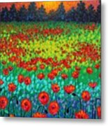 Evening Poppies Metal Print by John  Nolan