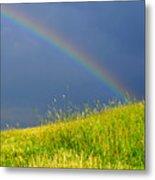 Evening Rainbow Over Pasture Field Metal Print by Thomas R Fletcher