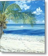 Exploring The Shallows Metal Print by Danielle  Perry