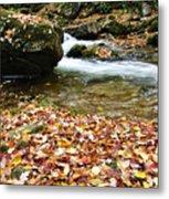 Fall Color Rushing Stream Metal Print by Thomas R Fletcher