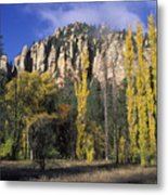 Fall Colors And Red Rocks Near Cave Metal Print by Rich Reid