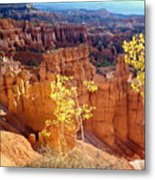 Fall In Bryce Canyon Metal Print by Marty Koch