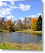 Fall Pond Metal Print by Penny Neimiller