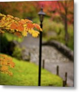 Fall Serenity Metal Print by Mike Reid