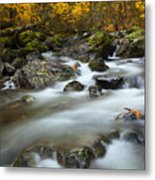 Fall Surge Metal Print by Mike  Dawson