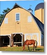Farm Metal Print by Mitch Cat
