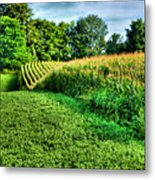 Field Of Dreams Iv Metal Print by Steven Ainsworth