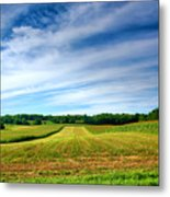 Field Of Dreams Two Metal Print by Steven Ainsworth