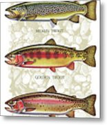 Five Trout Panel Metal Print by JQ Licensing