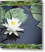 Floating Ivory Metal Print by Bell And Todd