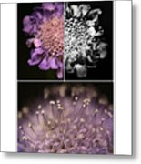 Floralicious  Metal Print by Bonnie Bruno