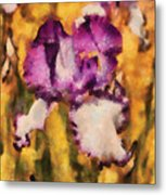 Flower - Iris - Diafragma Violeta Metal Print by Mike Savad