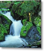 Flowing Softly Metal Print by Bill Morgenstern