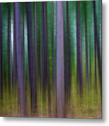 Forest Abstract02 Metal Print by Svetlana Sewell