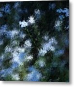 Forget Me Not Metal Print by David Lane