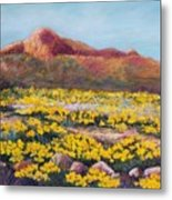 Franklin Poppies Metal Print by Candy Mayer
