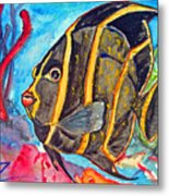 French Kiss-juvenile French Angelfish Metal Print by Kelly     ZumBerge