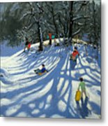 Fun In The Snow Metal Print by Andrew Macara