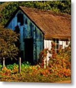 Garden Shed Metal Print by Helen Carson