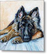 German Shepherd Metal Print by Enzie Shahmiri