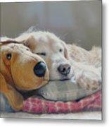Golden Retriever Dog Sleeping With My Friend Metal Print by Jennie Marie Schell