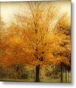 Golden Tree Metal Print by Sandy Keeton