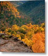 Golden Valleys Metal Print by Ryan Heffron