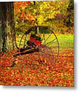 Gone With The Wind Metal Print by Diane E Berry
