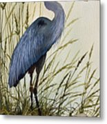 Great Blue Heron Splendor Metal Print by James Williamson