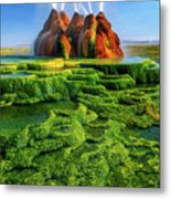 Green Fly Geyser Metal Print by Inge Johnsson