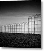 Greenhouse Metal Print by Dave Bowman