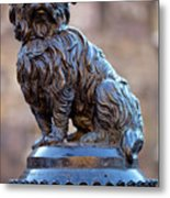 Greyfriars Bobby Metal Print by Andre Goncalves