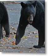 Guarding Her Cubs Metal Print by DigiArt Diaries by Vicky B Fuller