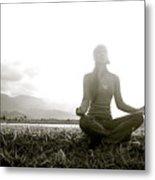 Hanalei Meditation Metal Print by Kicka Witte - Printscapes