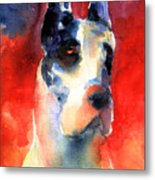 Harlequin Great Dane Watercolor Painting Metal Print by Svetlana Novikova